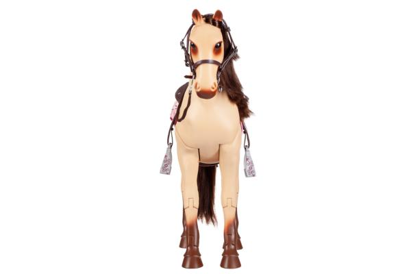 Кінь Чемпіон